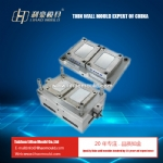 2 cavities dispoable PP thin wall mould